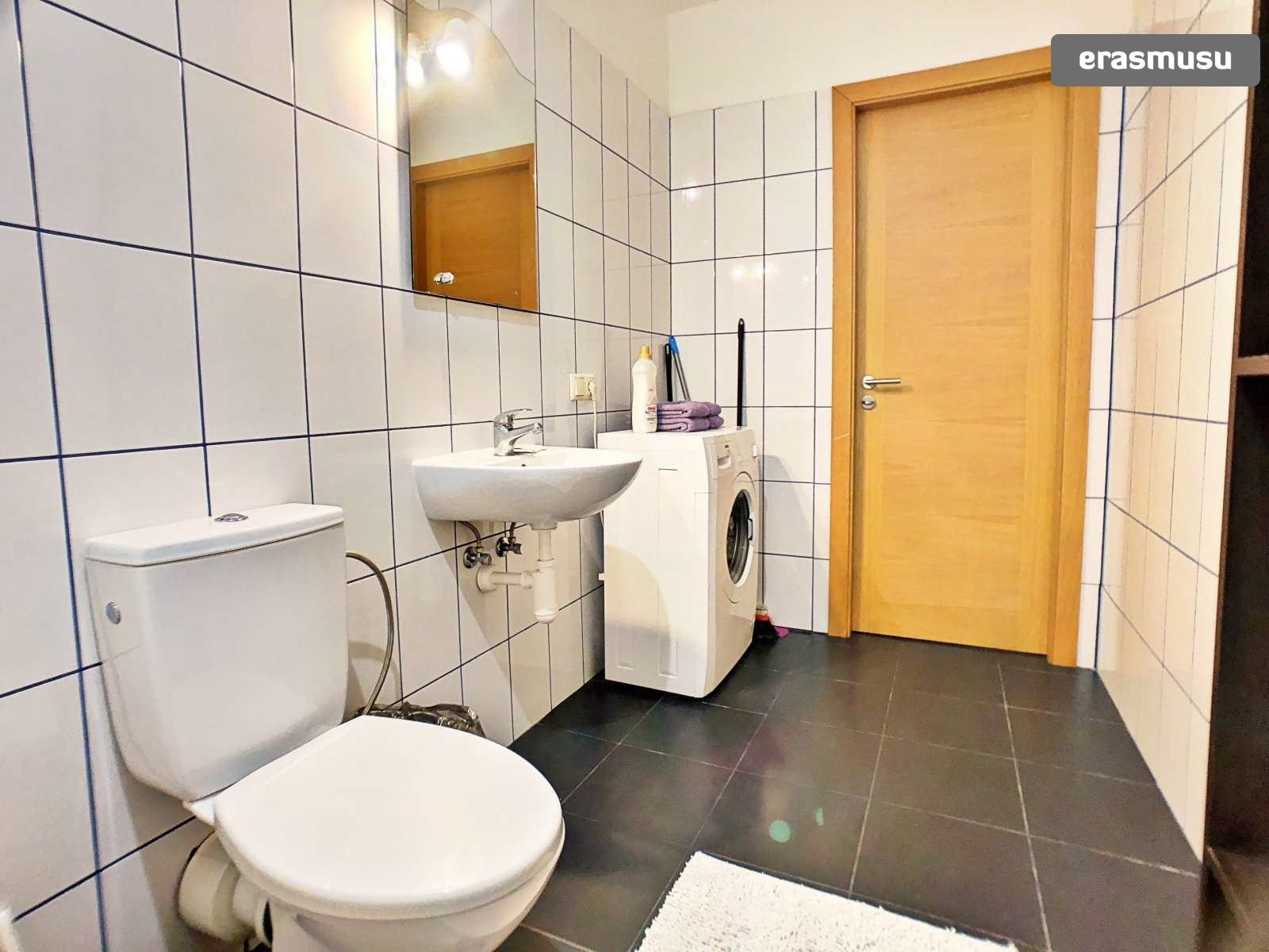 bright-1-bedroom-apartment-rent-maskavas-forstate-d34af6928fff3a
