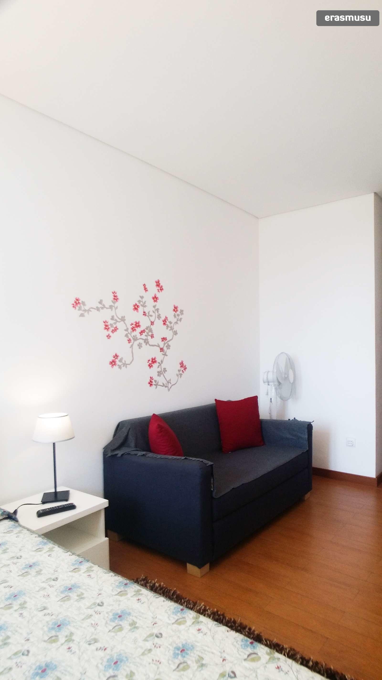 bright-studio-apartment-rent-cedofeita-56bf85d6a2be56c000023be7f