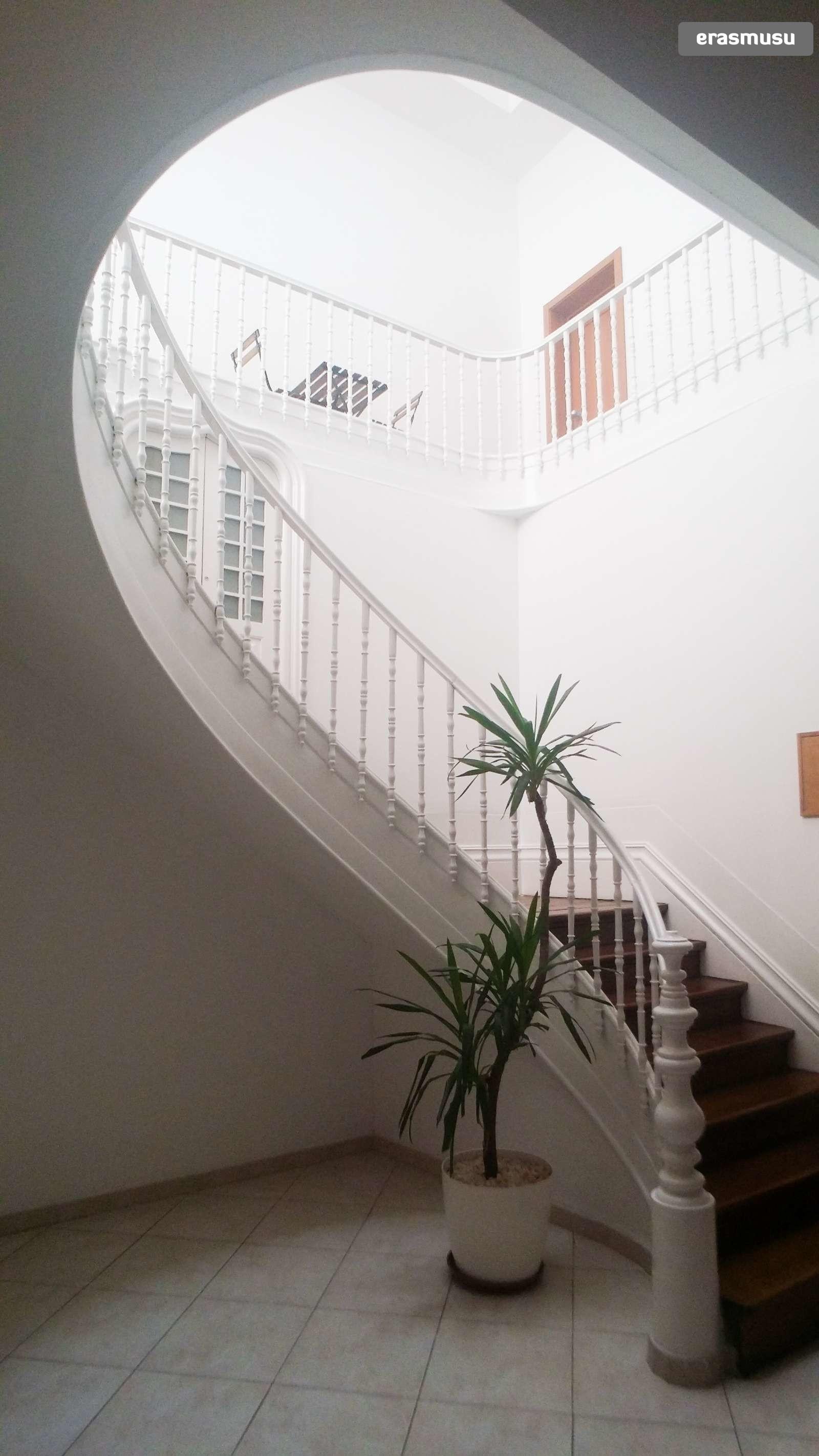 bright-studio-apartment-rent-cedofeita-99acebf073b1808c71fe7836b