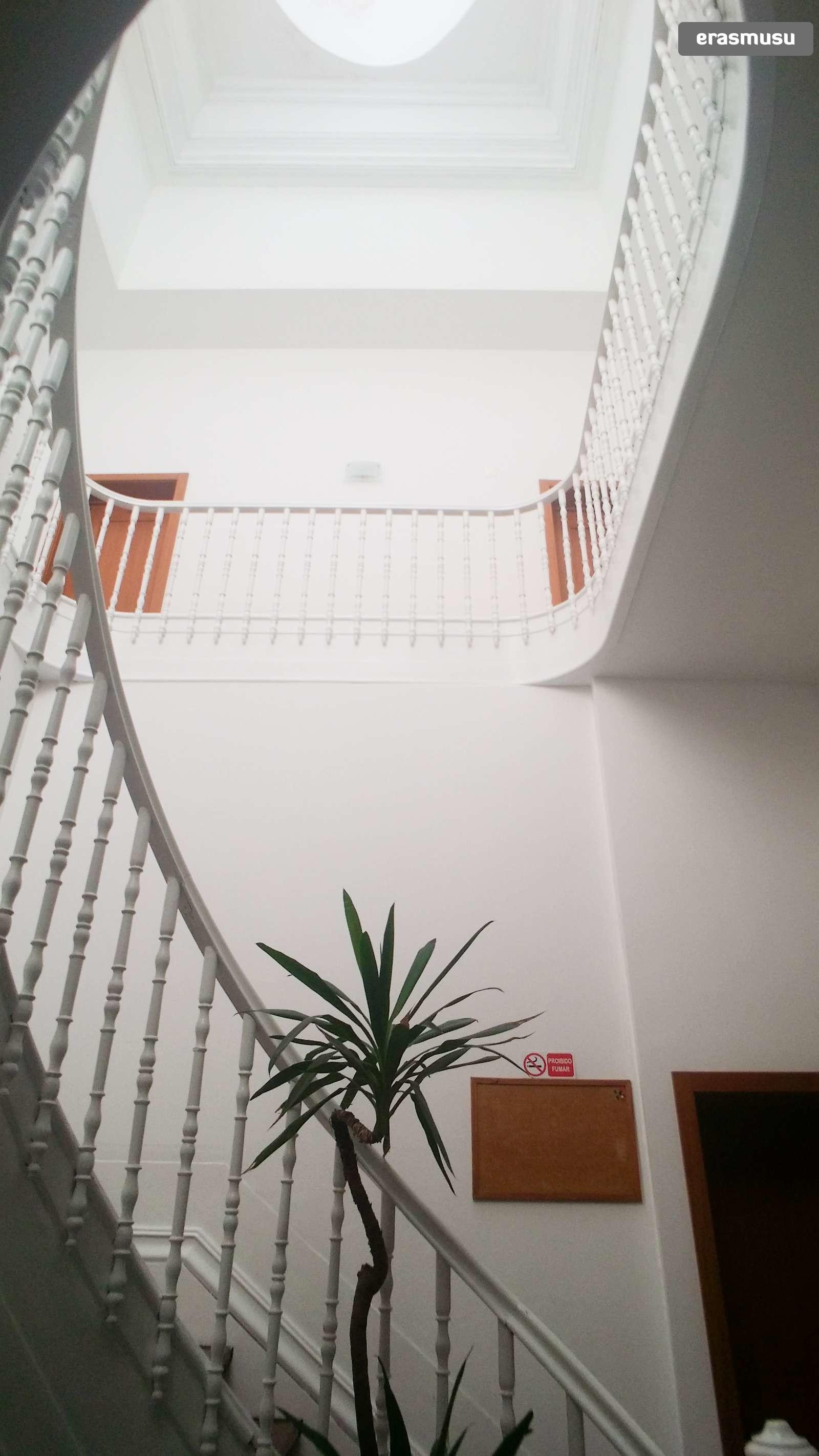 bright-studio-apartment-rent-cedofeita-e743af391dd008fa764b48f13