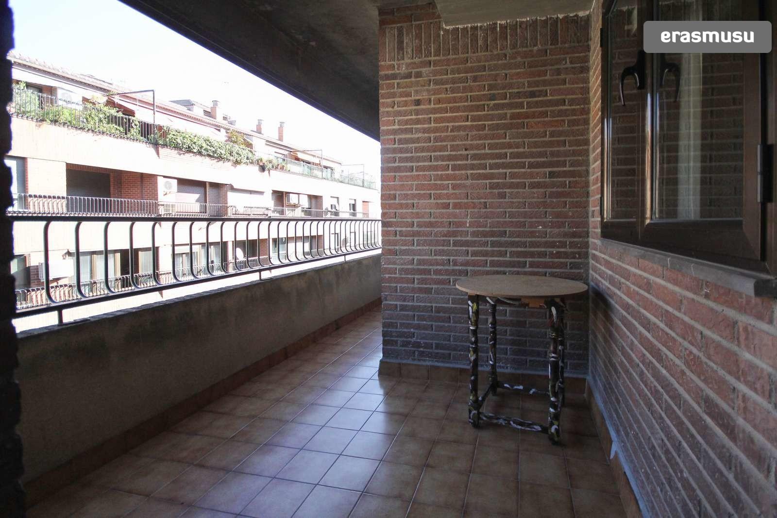 calle-socrates-3f80571a7e1e7fa6d7ac9ee20736ddfc