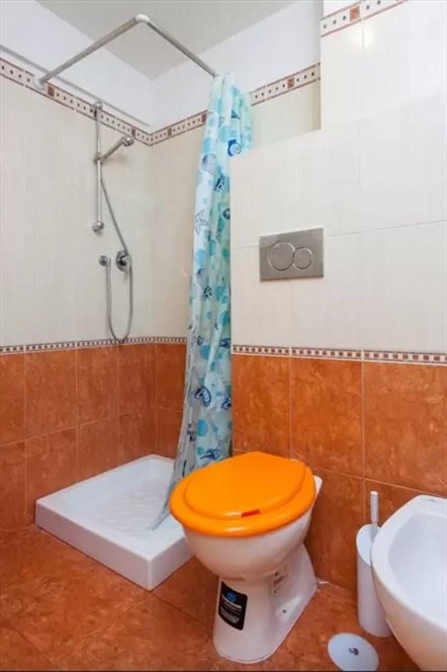 Camera singola economica con bagno privato room for rent rome - Ostelli londra con bagno privato ...