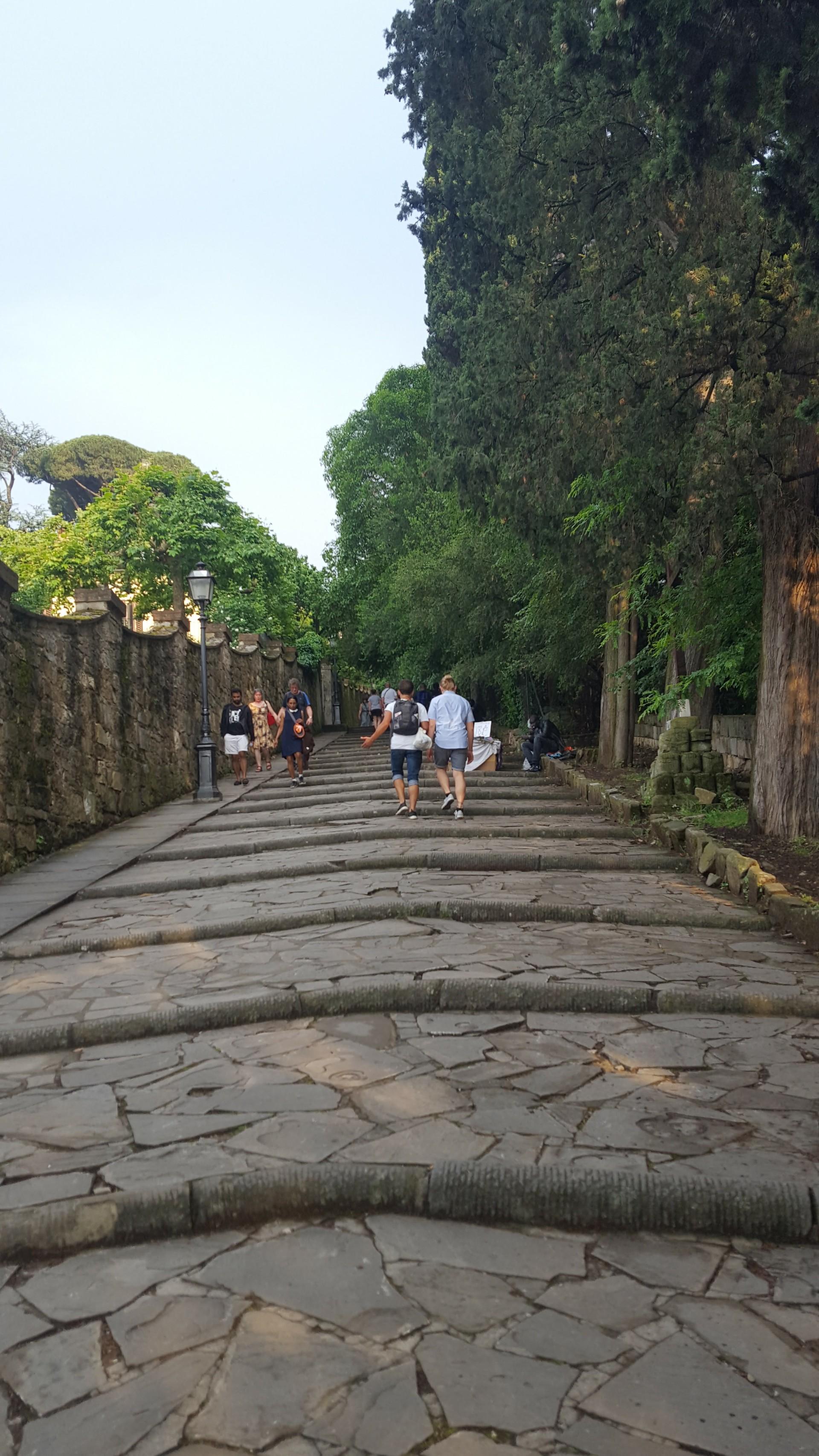 Camino para llegar a la Plaza Miguel Ángel