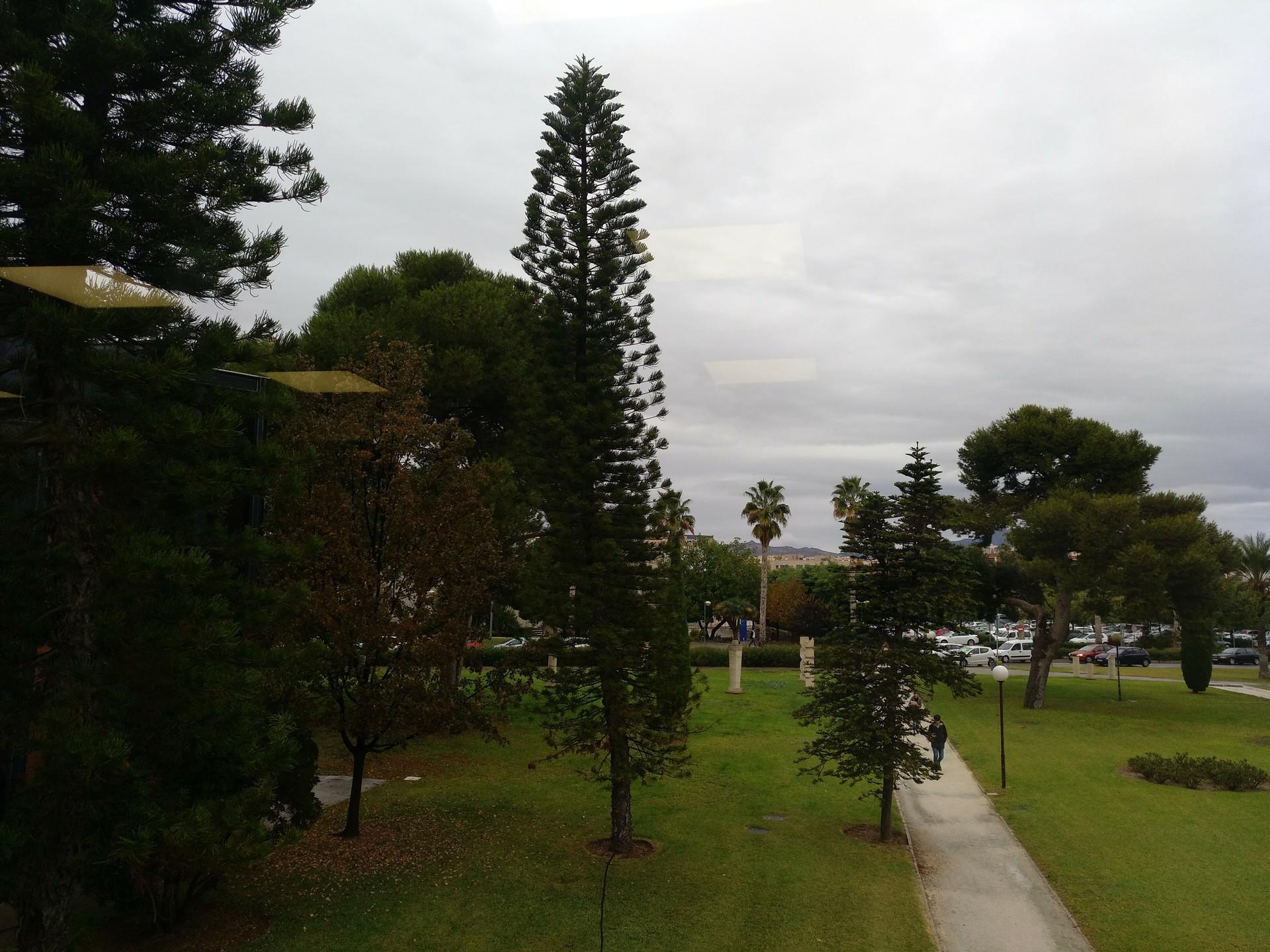 Campus - Facultad Derecho