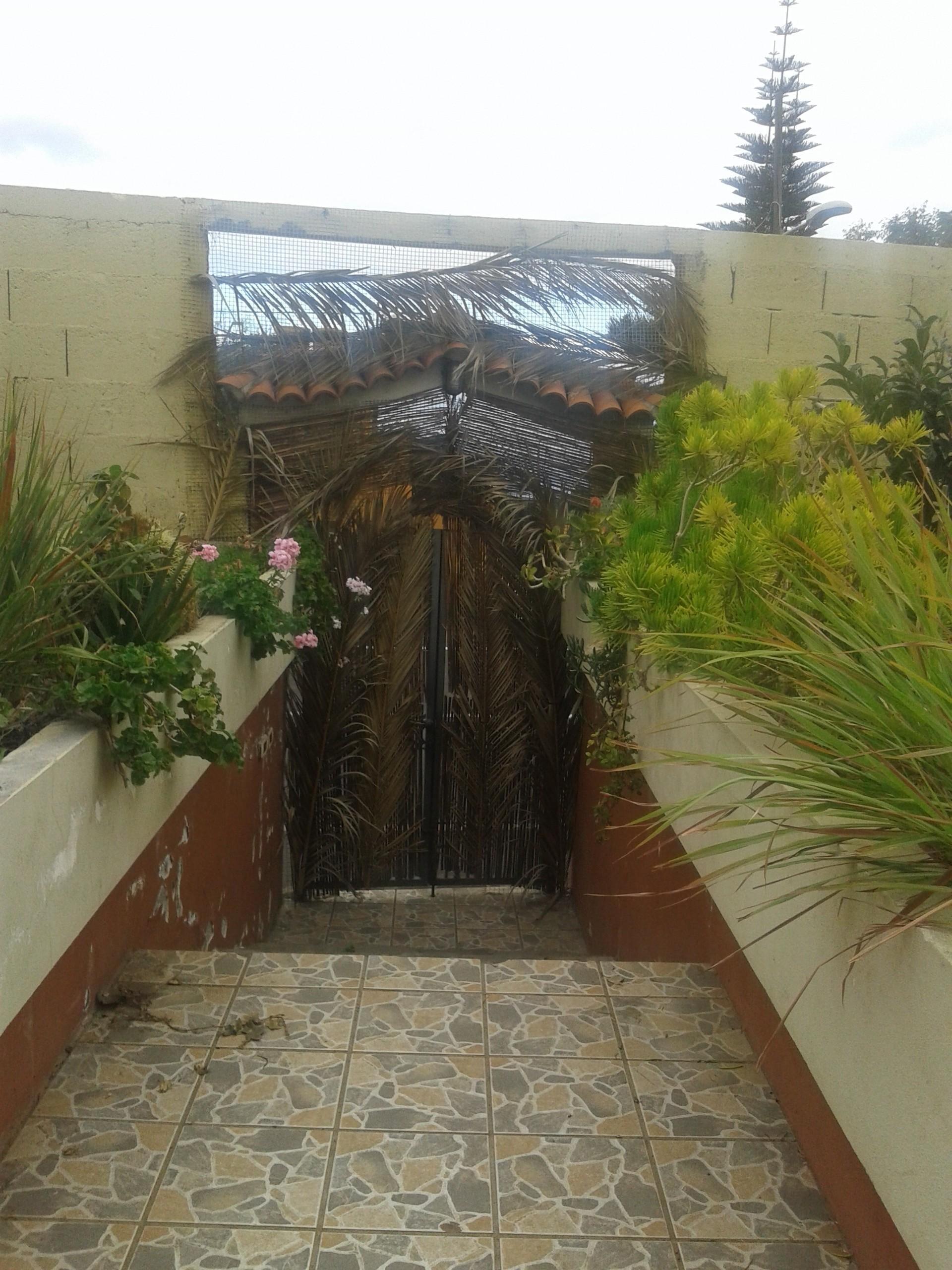 Casa terrera con huerto y amplia terraza