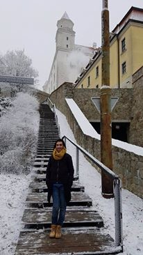 castillo-bratislava-6d8ae553ddef3f699345