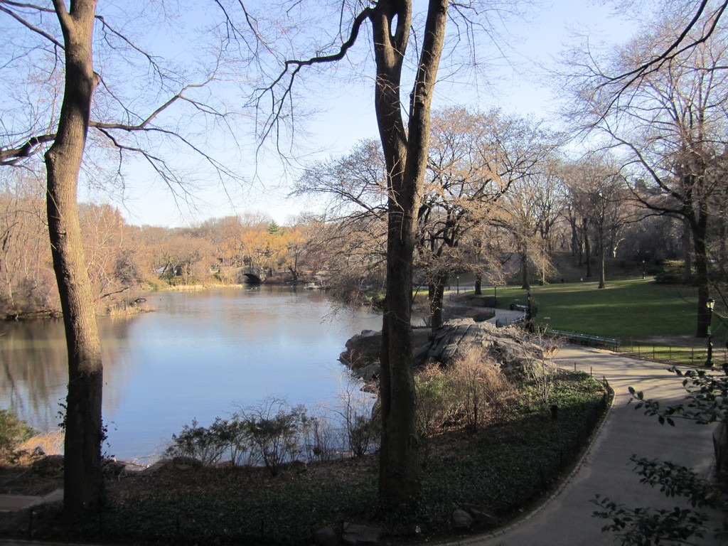 Central Park di New York
