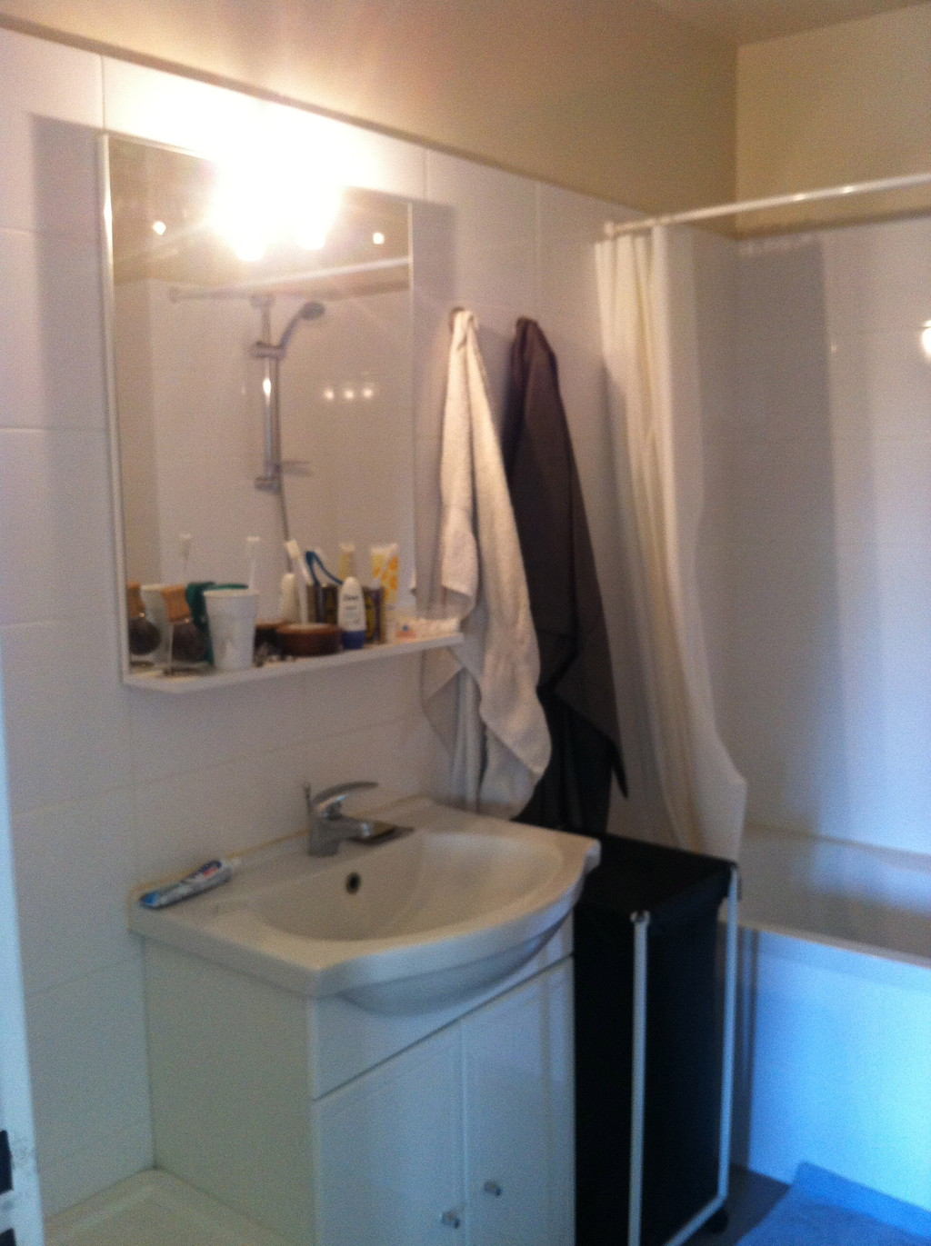 Chambre priv avec salle de bain dans une colocation for Salle de bain dans une chambre de 12m2