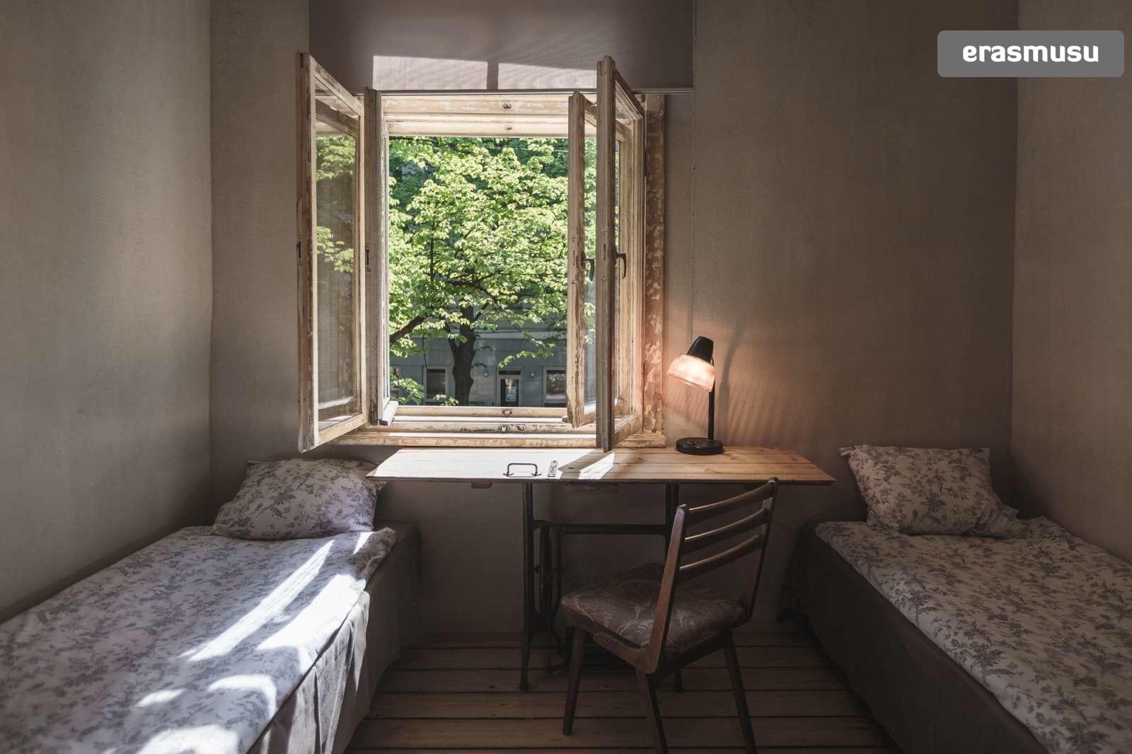 charming-studio-apartment-rent-agenskalns-pet-friendly-302085354
