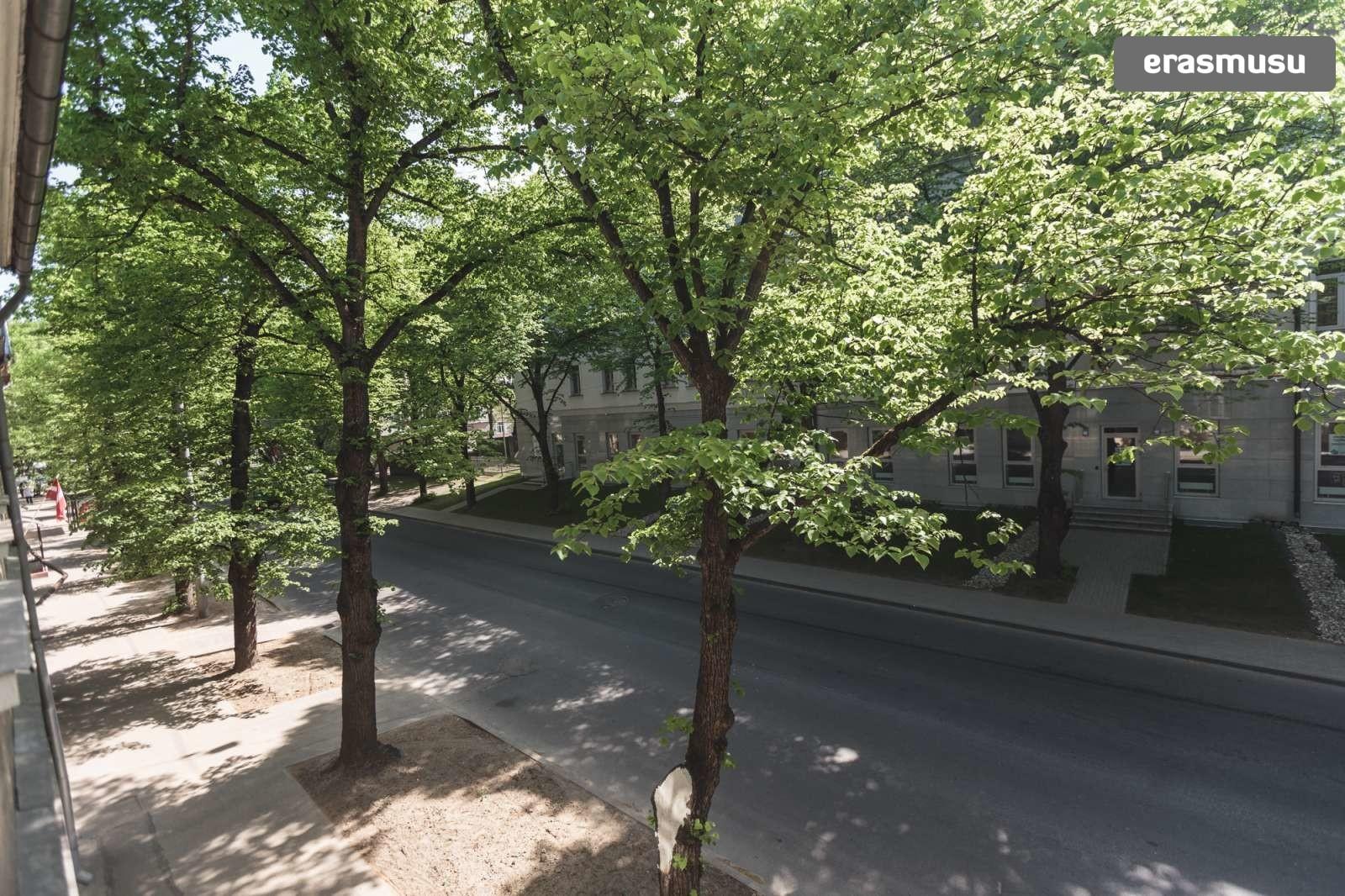 charming-studio-apartment-rent-agenskalns-pet-friendly-3b988ca55