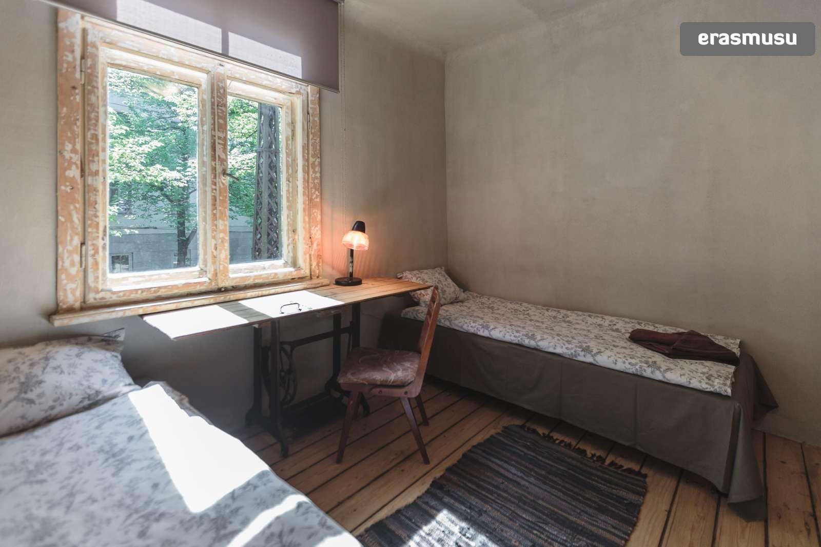charming-studio-apartment-rent-agenskalns-pet-friendly-90b98e3fb