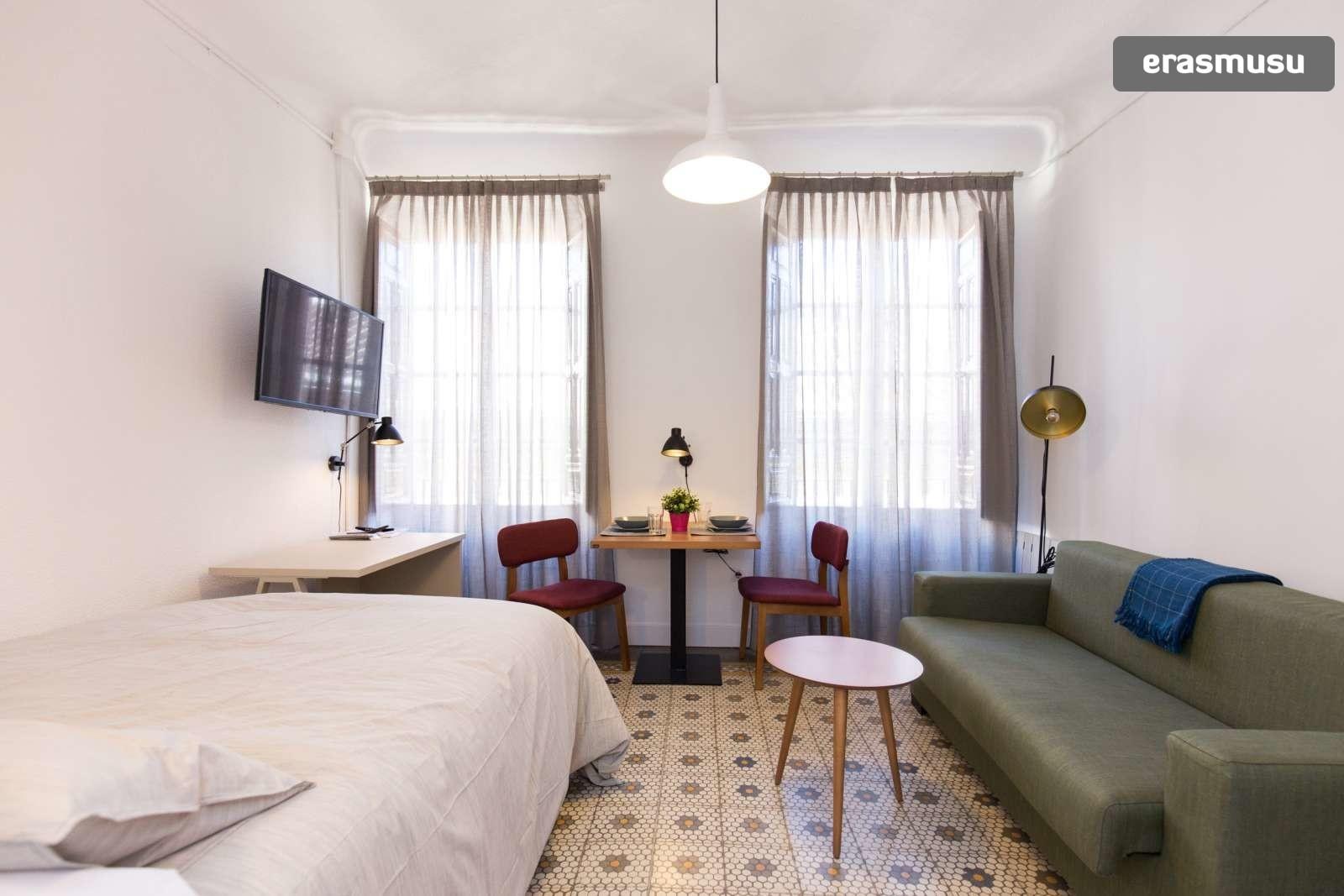 charming-studio-apartment-rent-city-centre-3841c4aa0e6054b754384