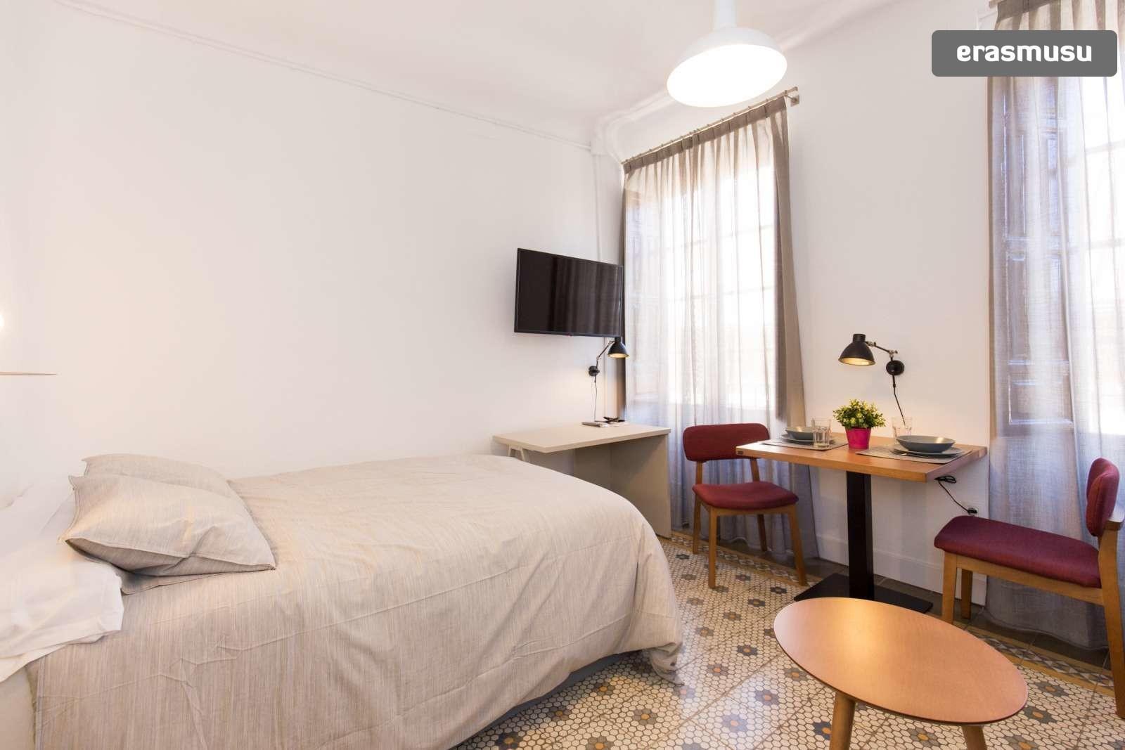 charming-studio-apartment-rent-city-centre-526f87c1a88483105ae0d