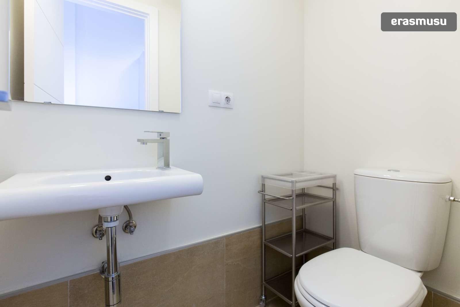 charming-studio-apartment-rent-city-centre-811e1dce45927a67dd5ad