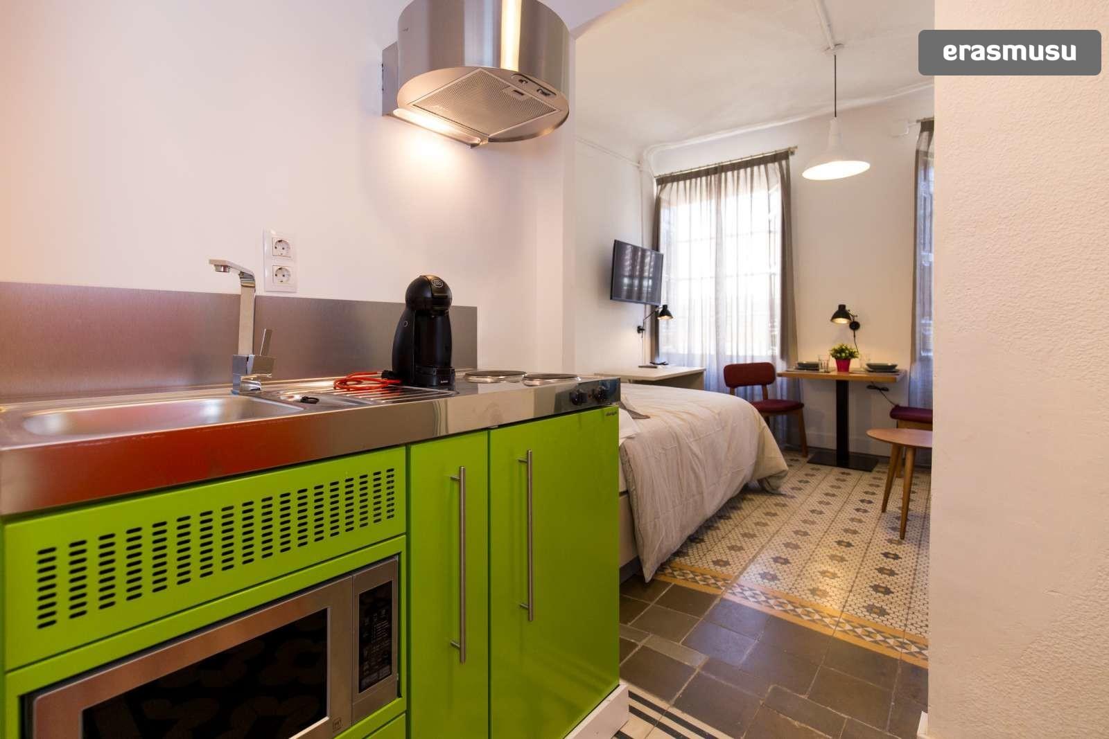 charming-studio-apartment-rent-city-centre-d643330ebad35ec3e9984
