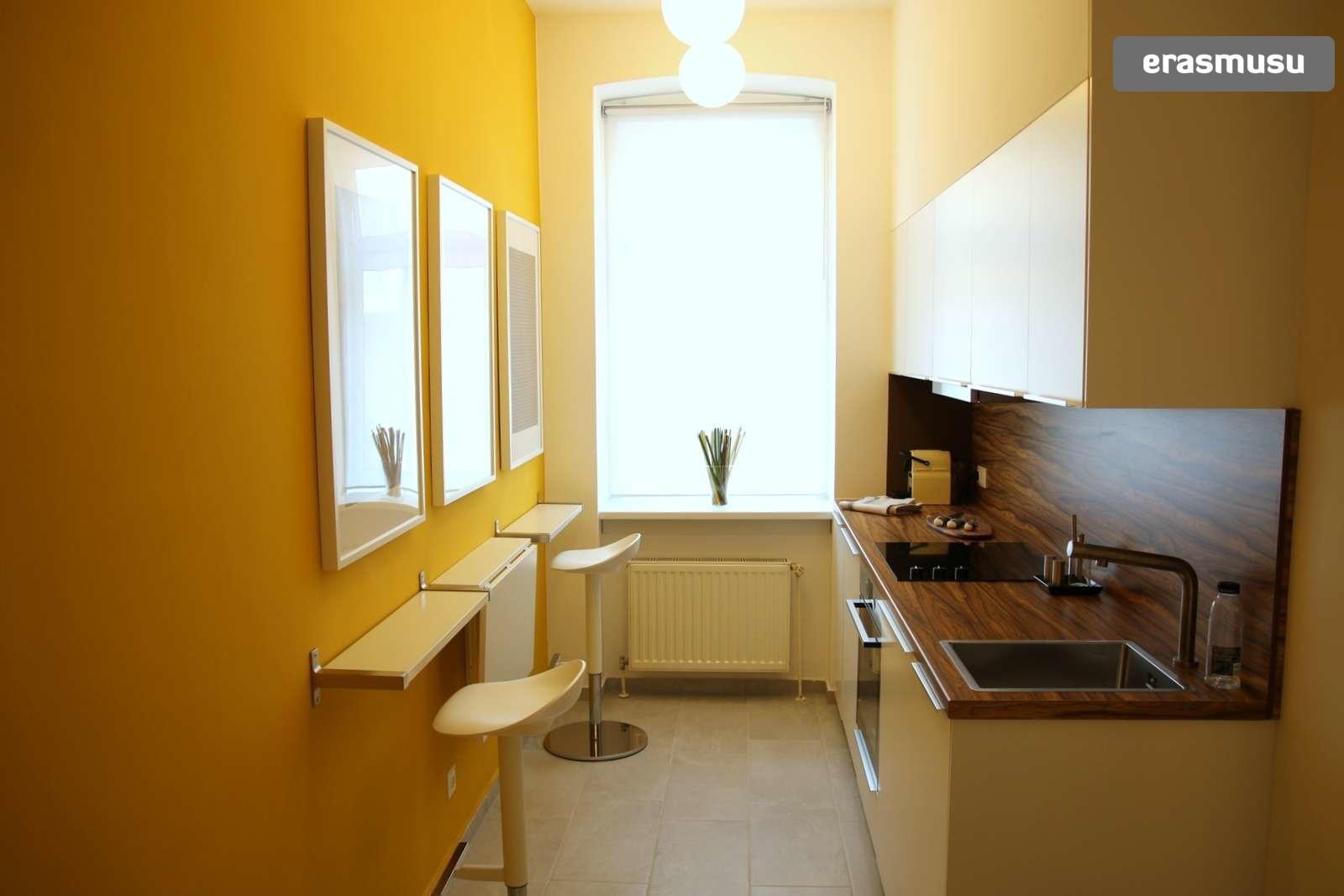 charming-studio-apartment-rent-wahring-e8c874c3c2fbd274e7eb326ec