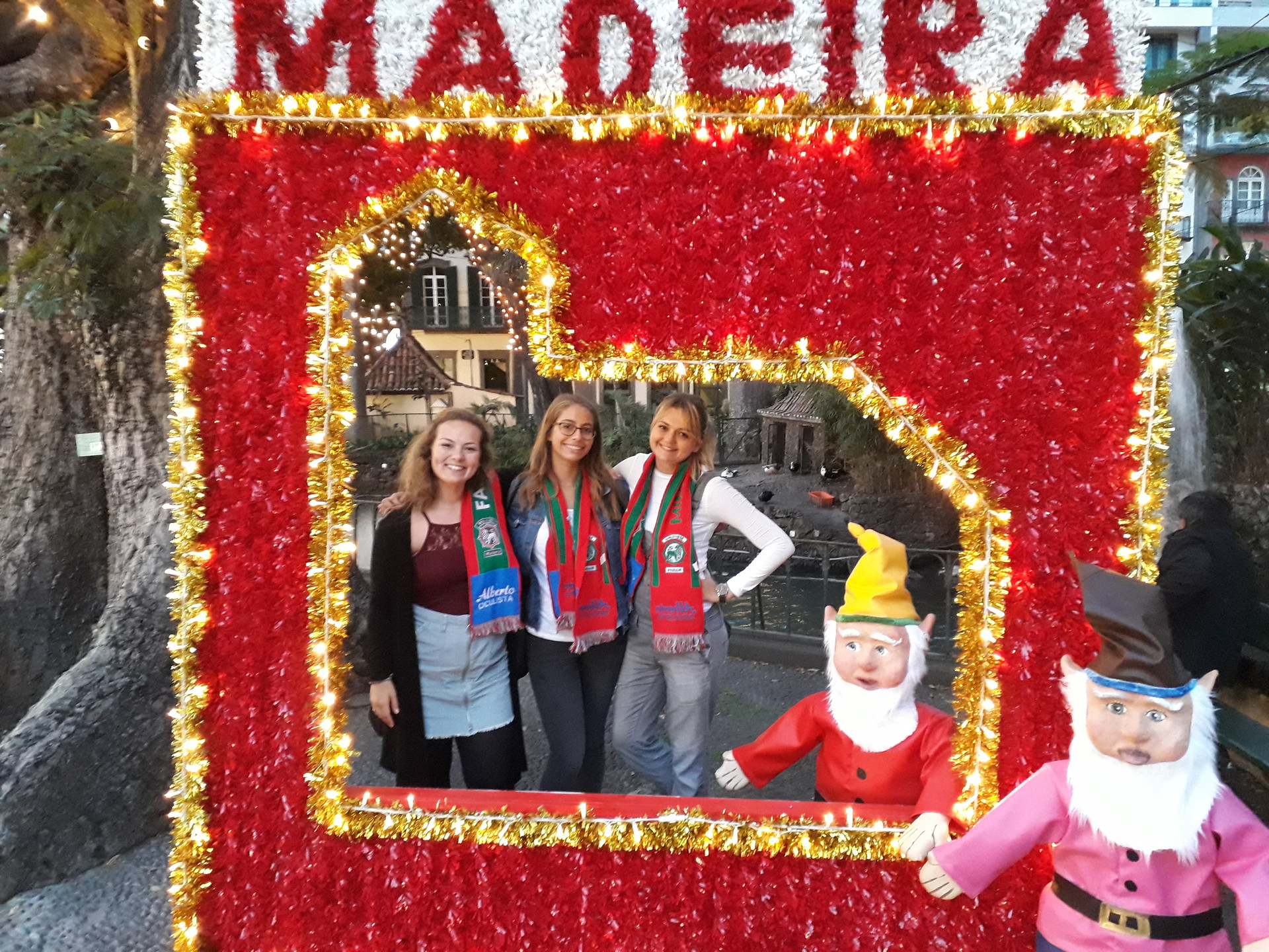 Christmas in Madeira for an Erasmus student