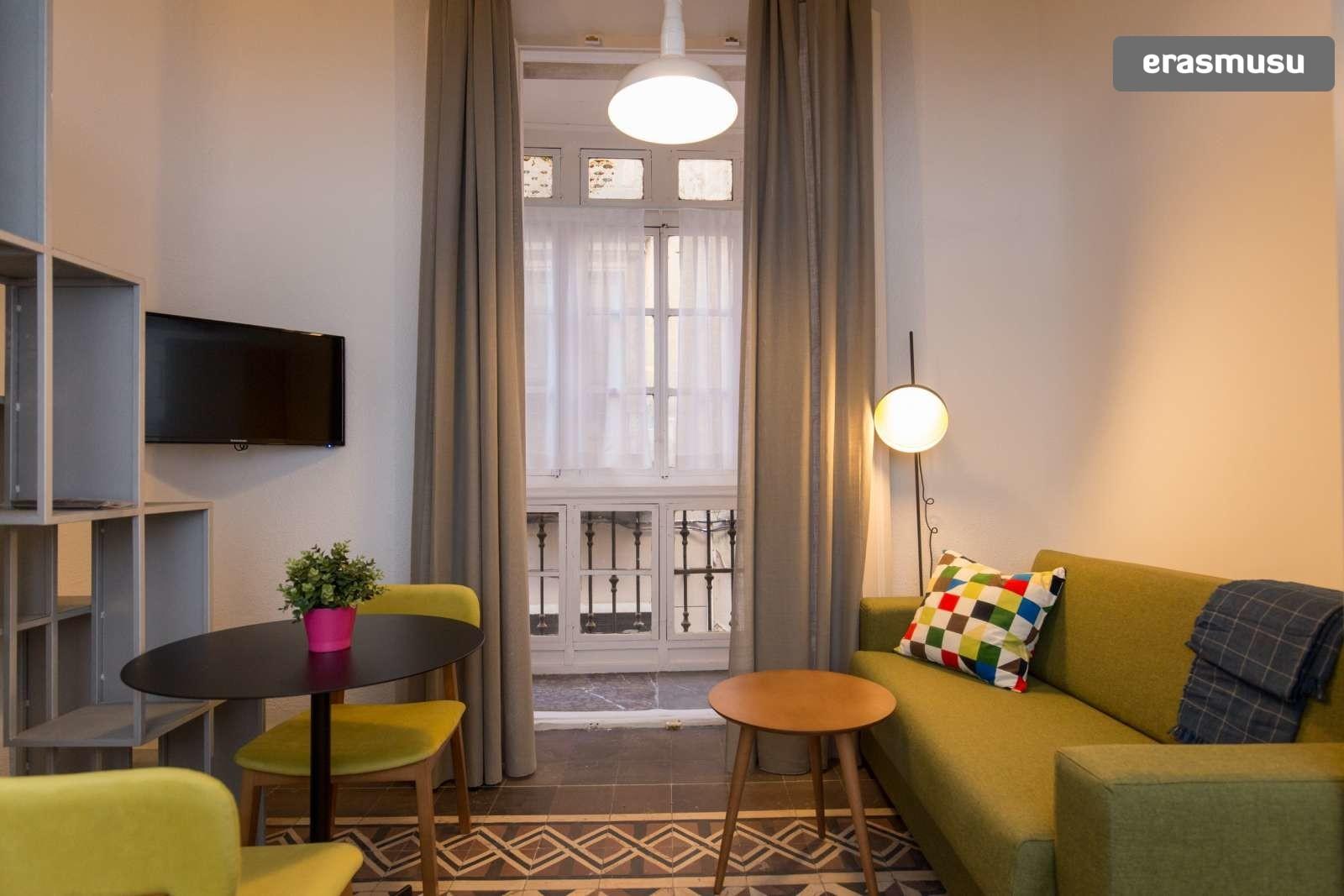 colourful-studio-apartment-rent-city-centre-572396654f14242149fa