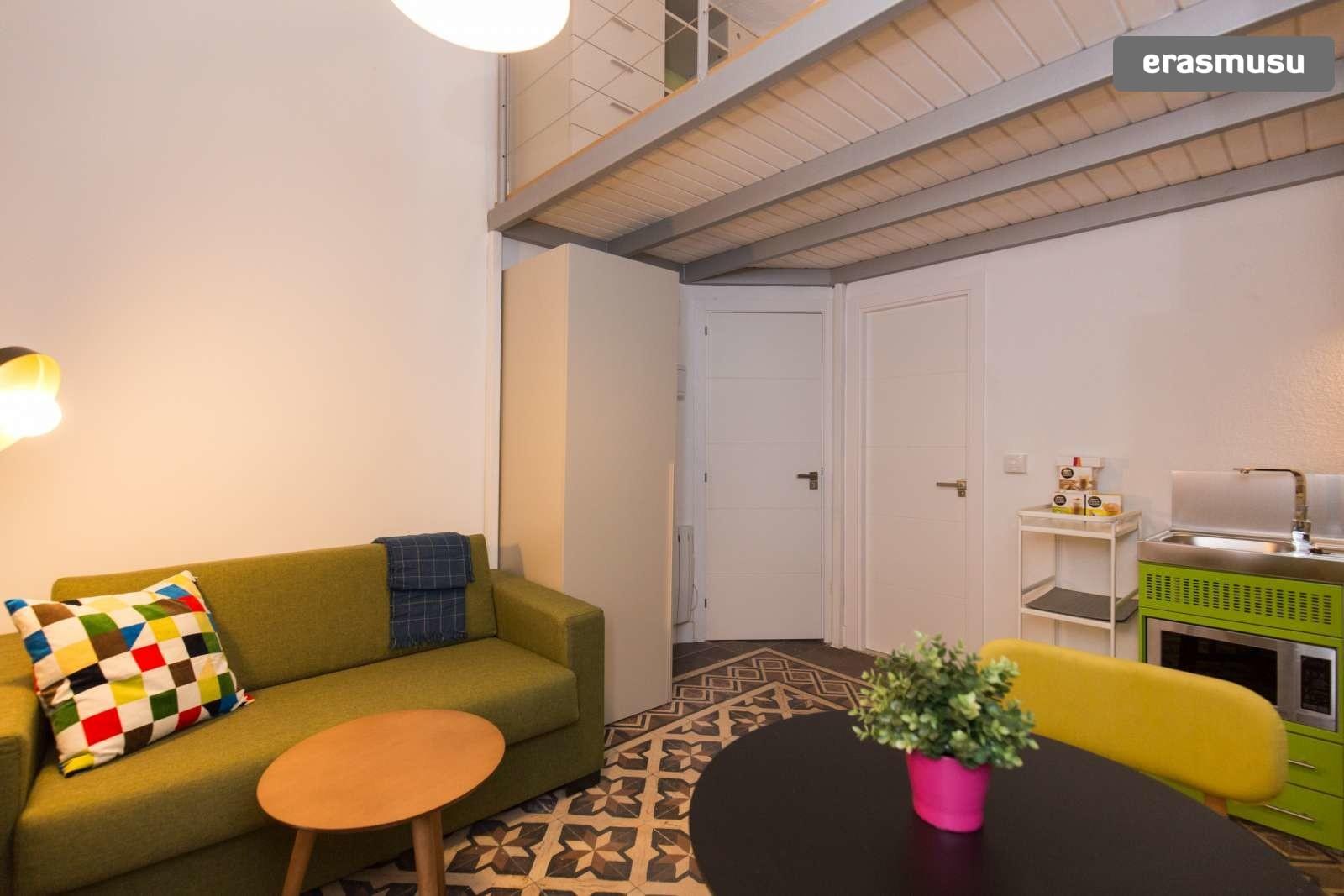 colourful-studio-apartment-rent-city-centre-b6dba7697fd181e85316