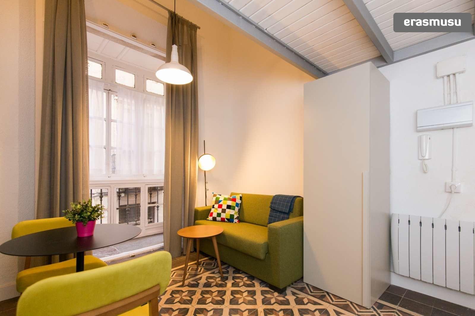 colourful-studio-apartment-rent-city-centre-c93a46f68f0377c2c3c4