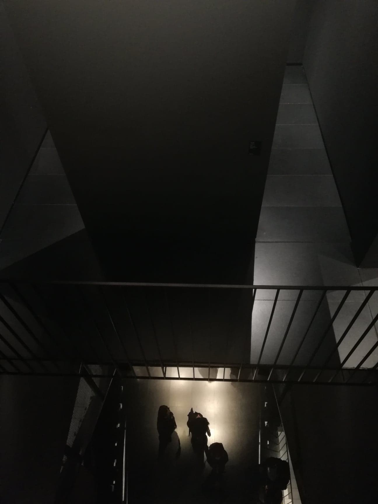 contemporary-art-museum-c466088601d5093d