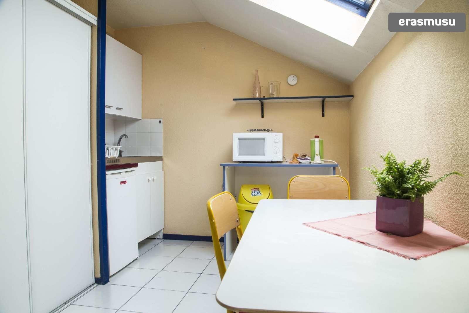 Couple Friendly 1 Bedroom Apartment For Rent Near Insa Lyon La Doua Flat Rent Lyon