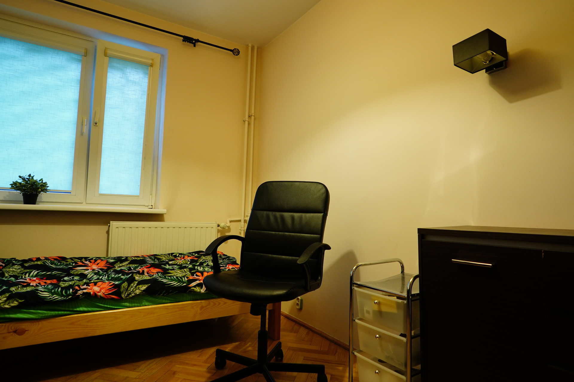 Cozy single room in very good location