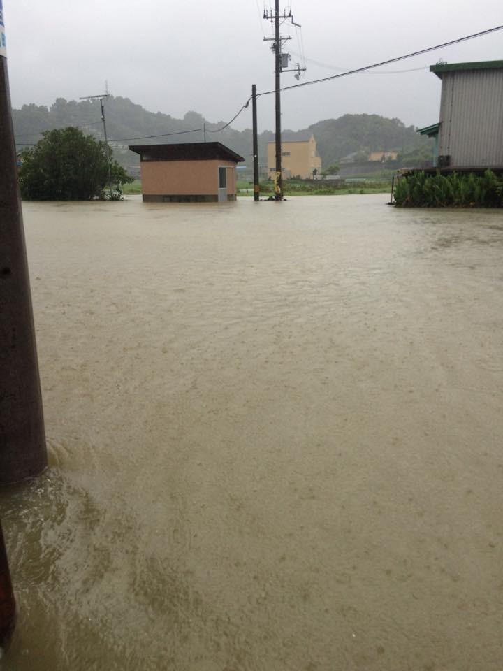 day-17-home-day-trip-osaka-postponed-typ