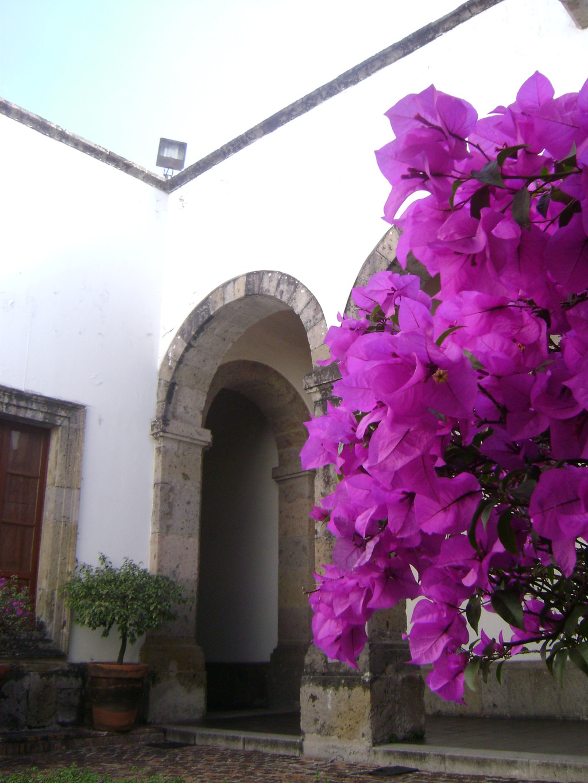 de-hospicio-a-museo-9d5dfd200c1708db594f