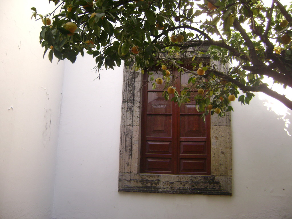 de-hospicio-a-museo-e13c8f154b8d61678f1b