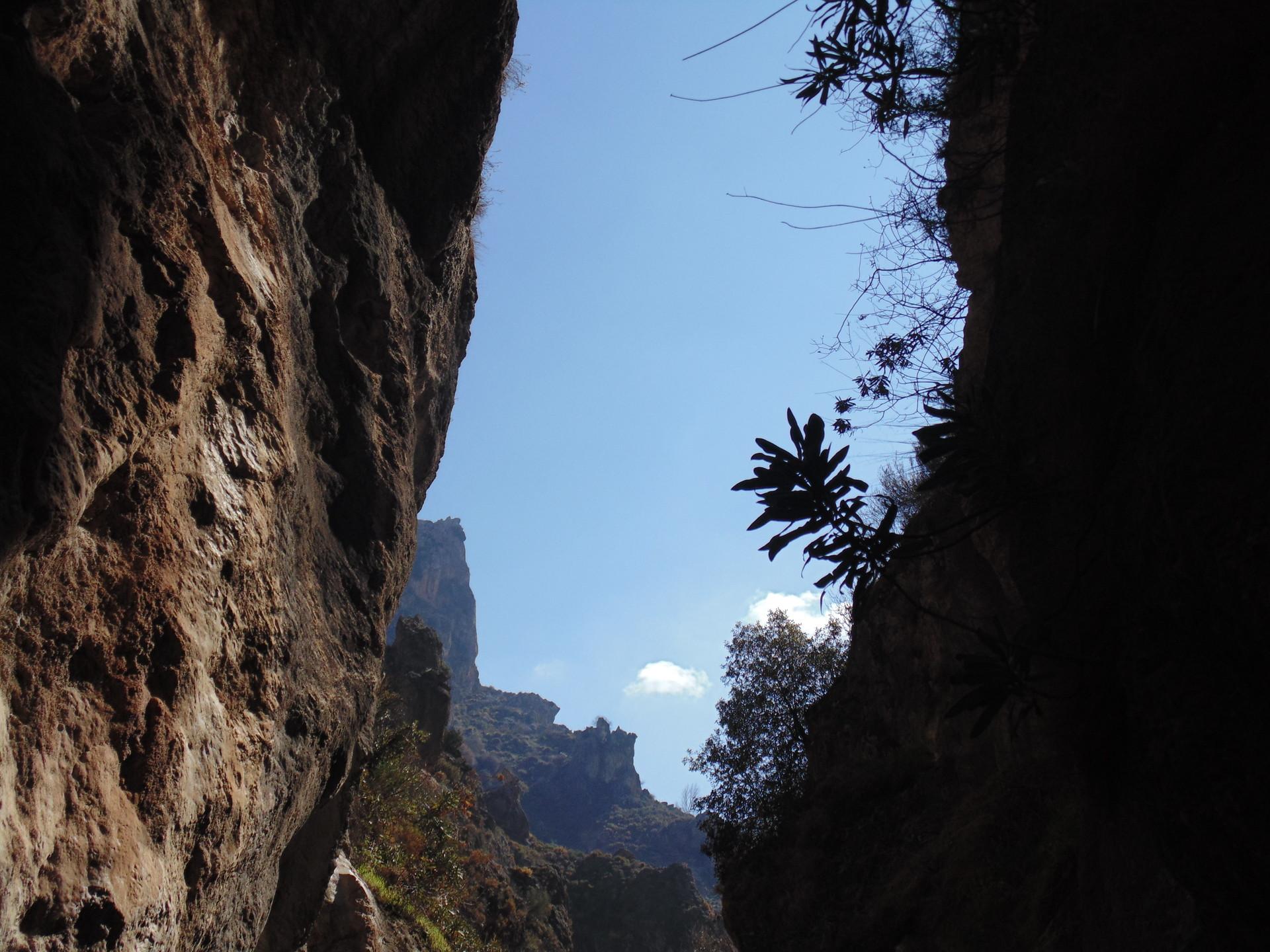 Diminuta ante la inmensidad de la naturaleza