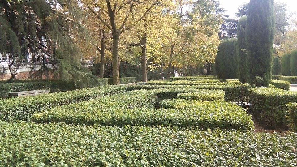 Jardines de sabatini qu ver en madrid for Jardines que visitar en madrid