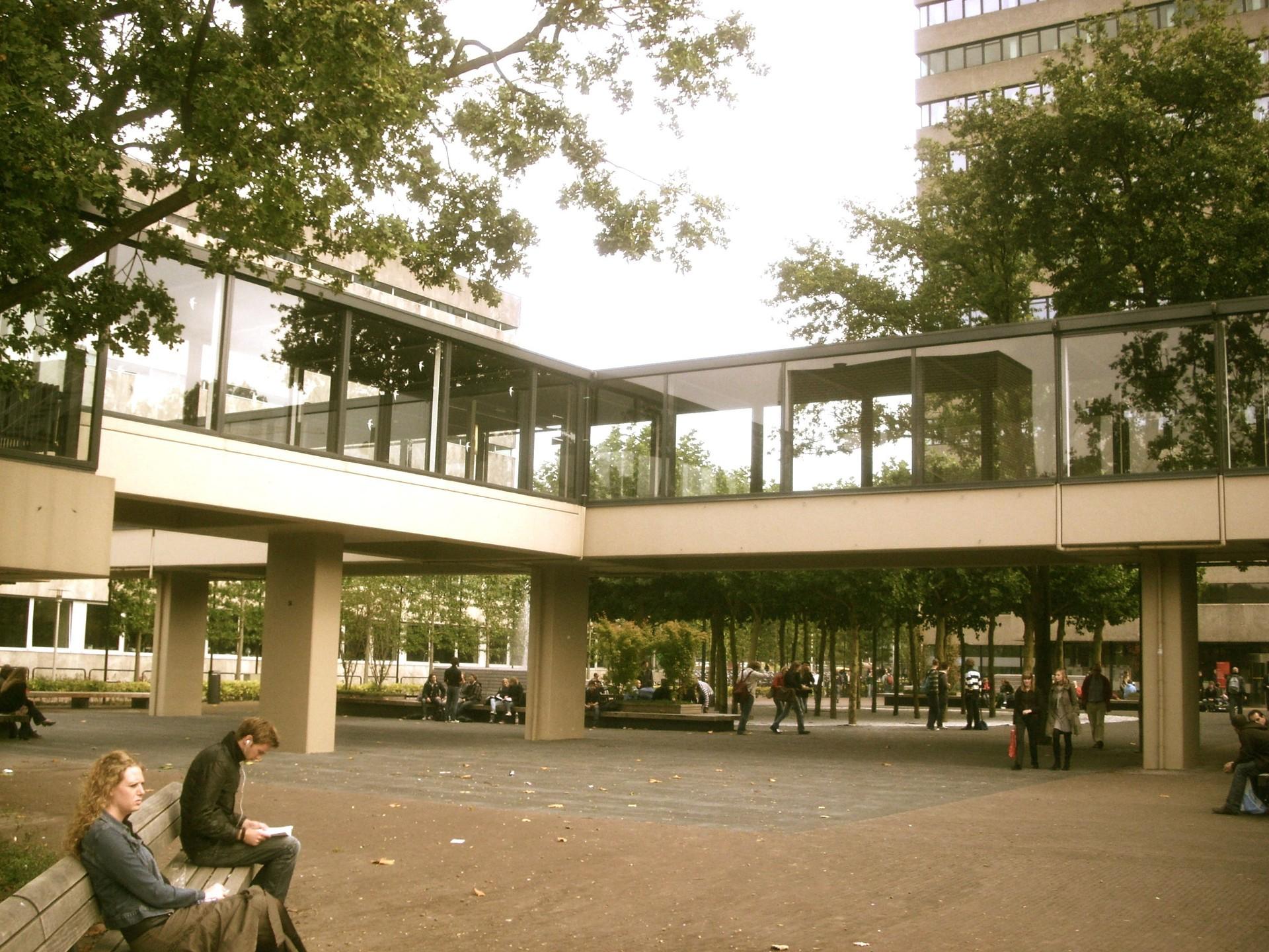 Doświadczenia na Uniwersytecie im. Radbouda w Nijmegen