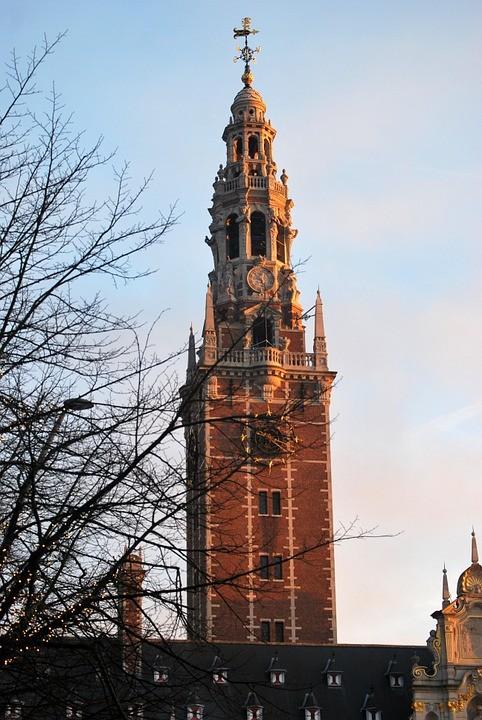 Doświadczenia w Leuven, Belgia oczami Sheeby