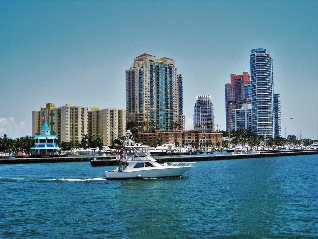 Doświadczenie w Miami, Stany Zjednoczone według Jolie
