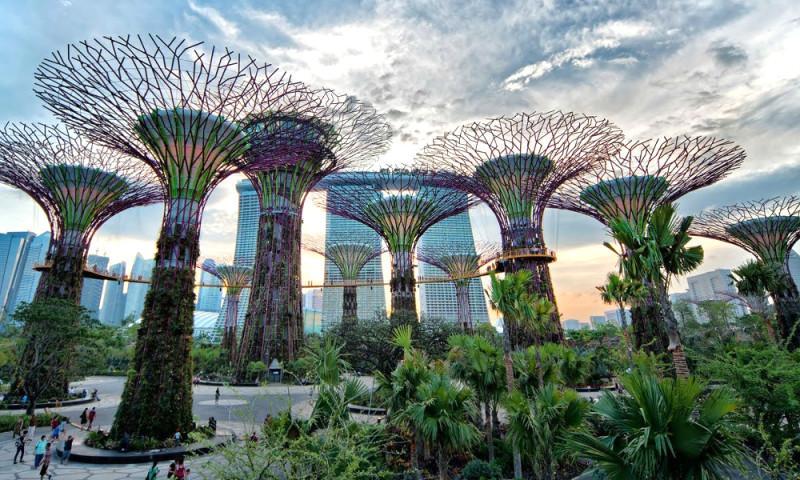 Doświadczenie w Singapurze, Singapur według Su