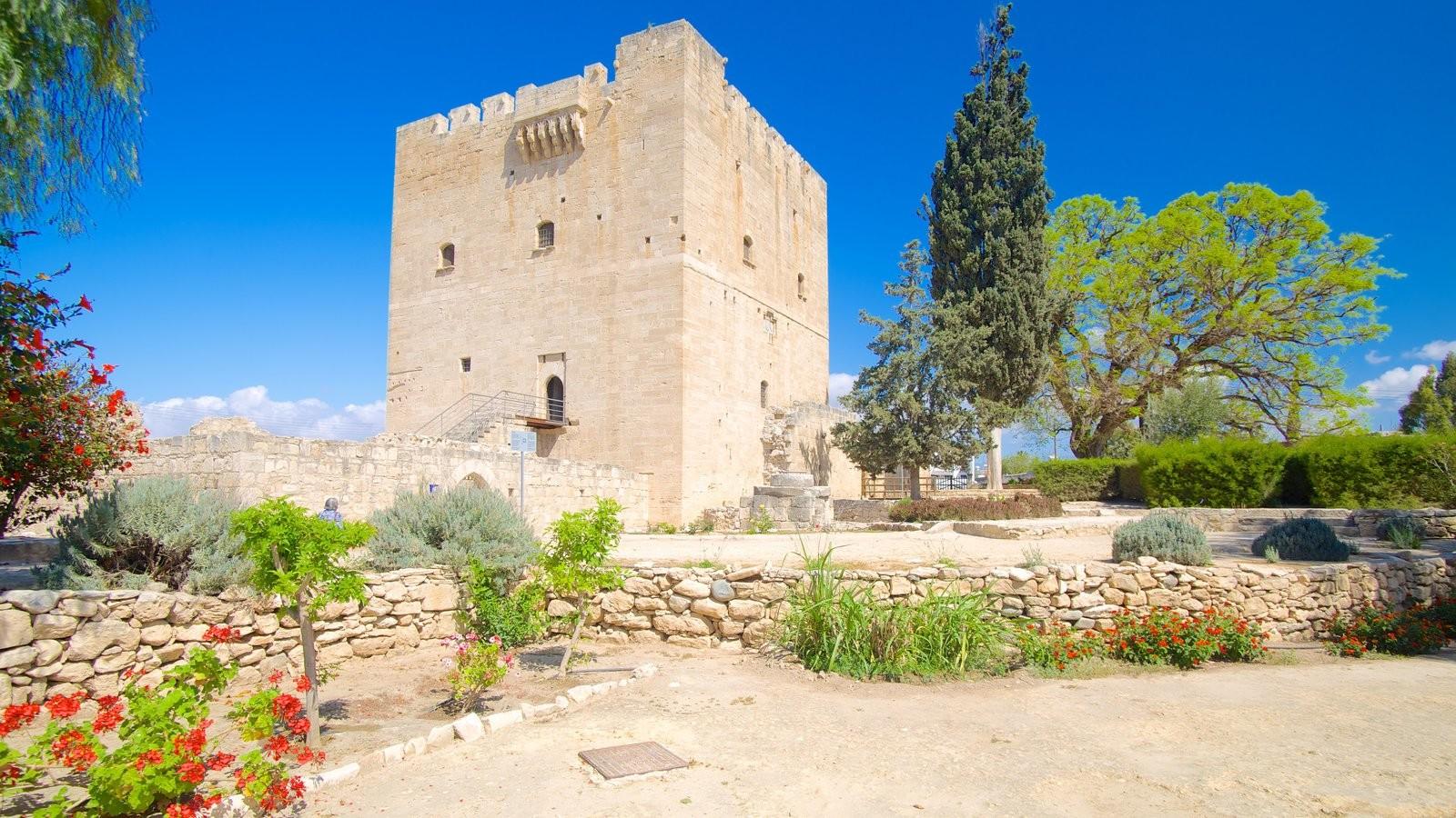 Doświadczenie z Limassol, Cypr oczami Antrii