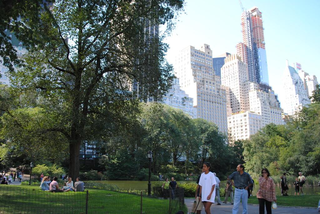 El pulmón de Nueva York
