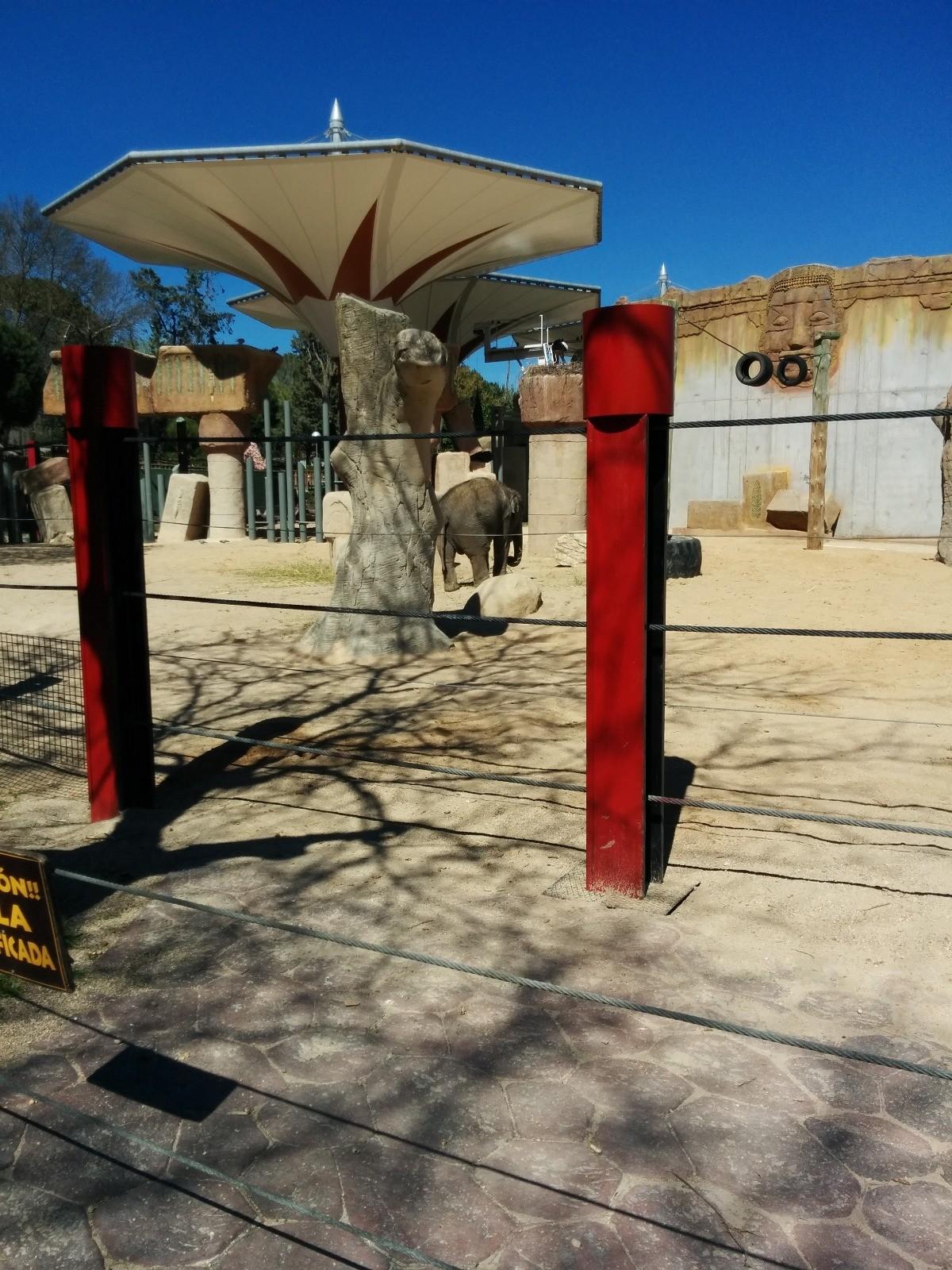 el-zoo-madrid-fe1d5dbbfc11dd42648fa0ff47
