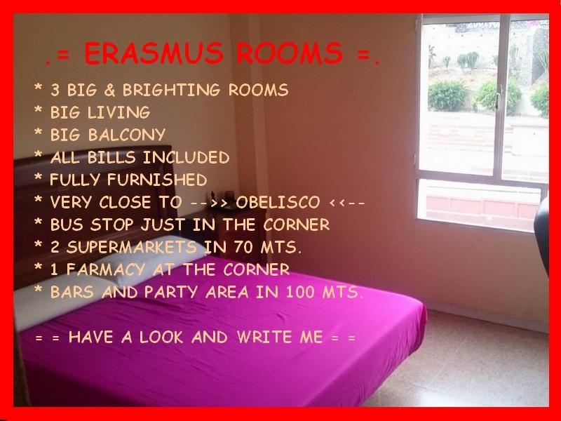 erasmus-rooms-185142f8d77657f19cfa69fc49bb9278