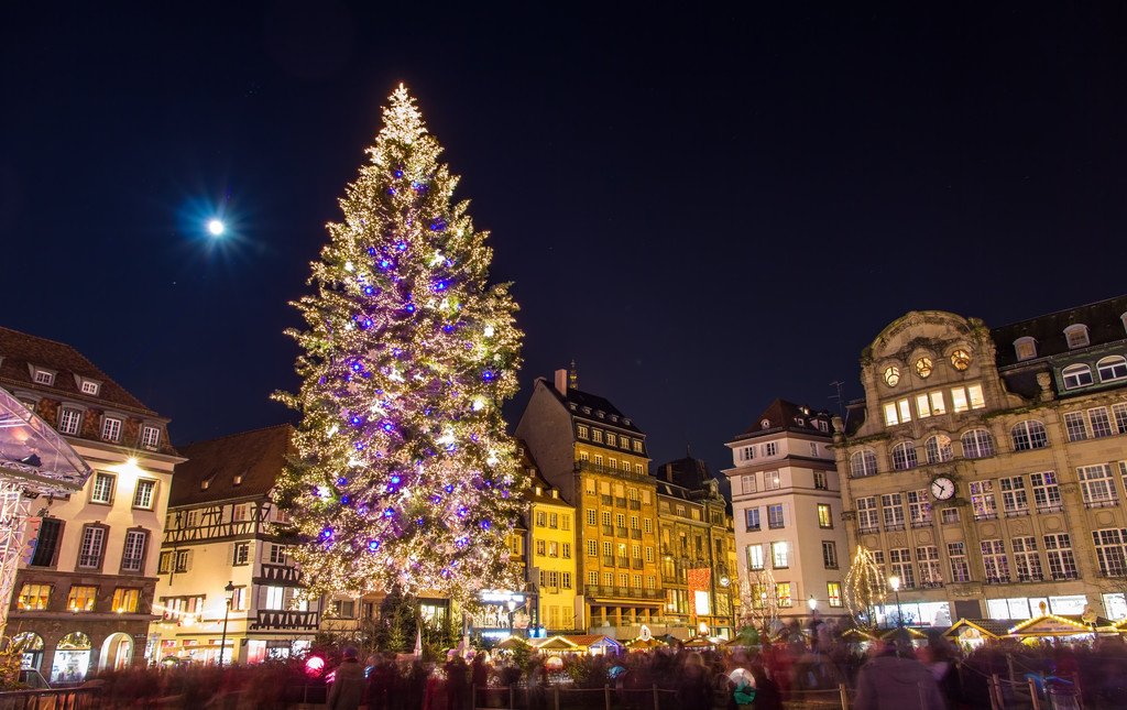 erasmus-strasburgo-parte-ii-a42b5676d05b