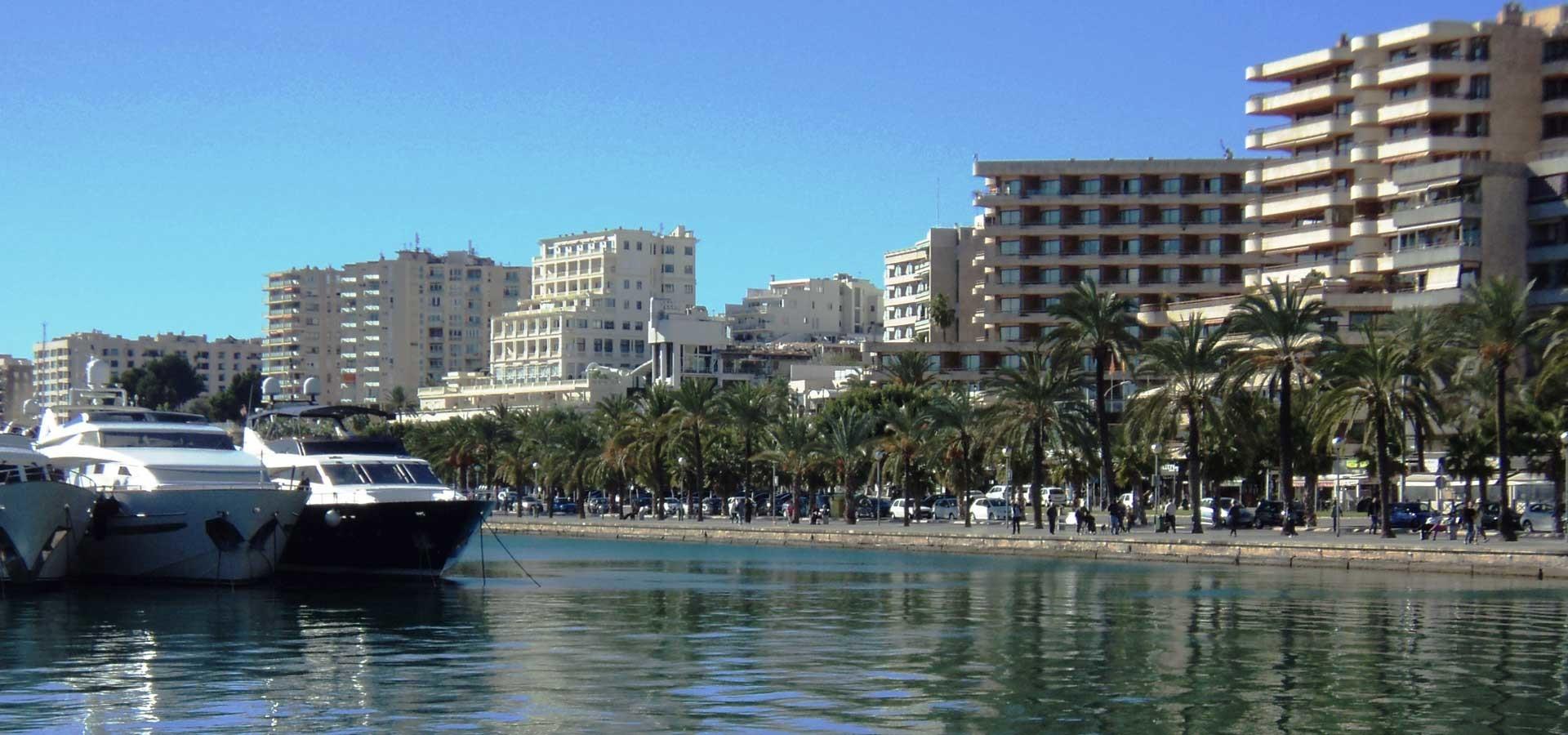 Esperienza Erasmus a Palma de Mallorca, Spagna di Maurice