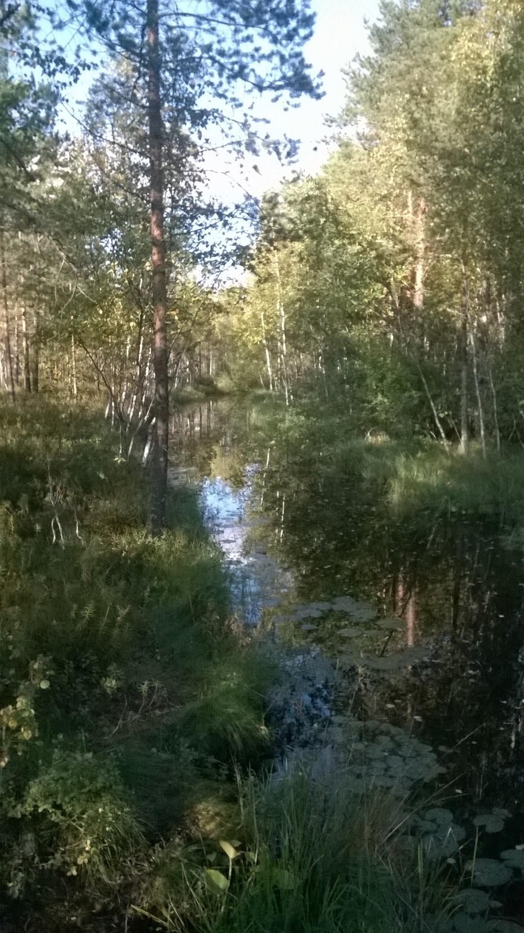 Excursão pela Finlândia!