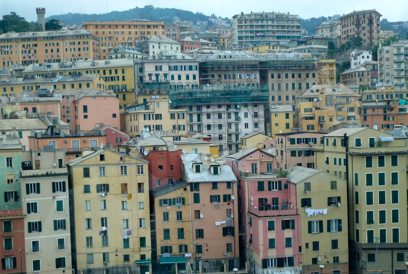 genoa chat Language exchange in genoa via live conversation or use email, text chat or voice chat follow free activities and lesson plans for fun, interesting, effective practice use guidelines provided by an expert in language exchange to help each other learn.