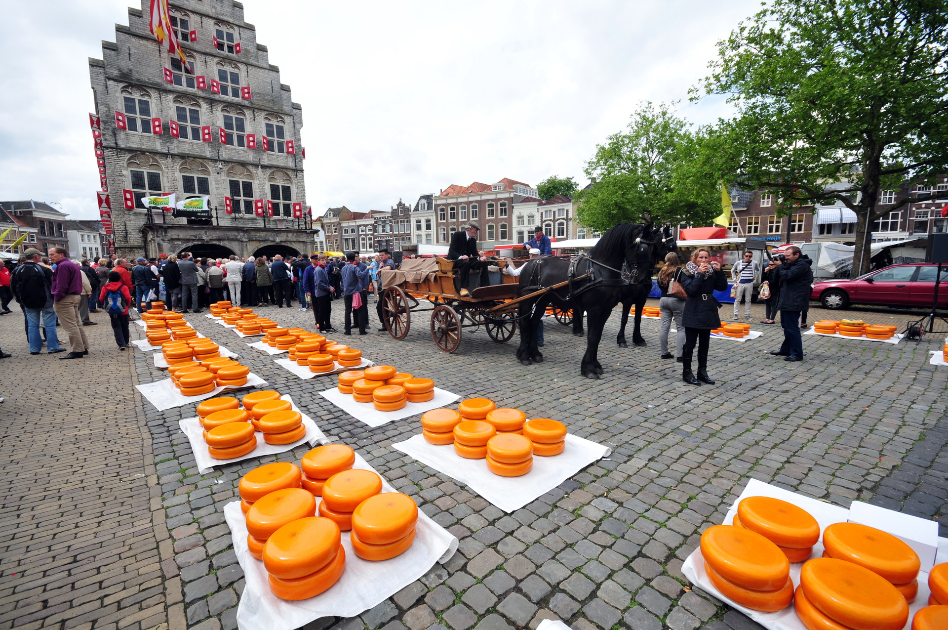 Experience in Gouda, Netherlands by Mark | Erasmus experience Gouda