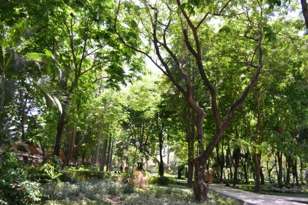 Experiência em Surubaya, Indonésia por Magya