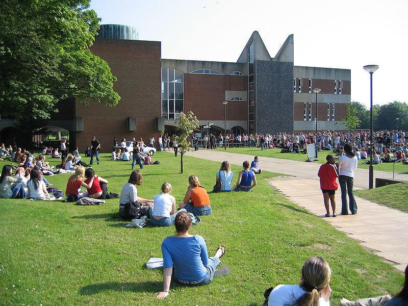 Experiencia en la Universidad de Sussex, Reino Unido por Emily
