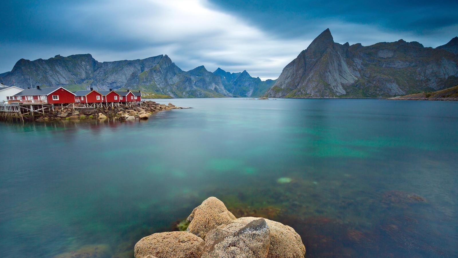 lugares donde nadar con delfines ballenas en libertad salvajes viajes turismo