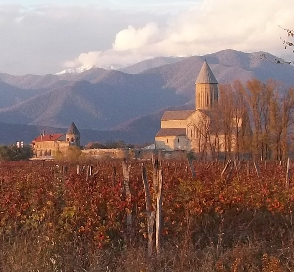 Explorando la cuna del vino