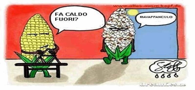 falsi-amici-10-palabras-italiano-espanol